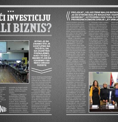 """Finansiranje MSP i preduzetnika (II Panel """"Velike žene malog biznisa"""")"""